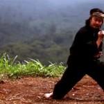 The Eastern Warriors Kisah Petualangan Menemukan Jati Diri Dalam Silat
