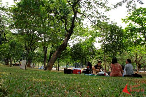 Taman Cattleya Taman Tersembunyi Di Jakarta