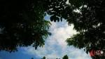 Hanifuddien El Kholilly - Coba Lihat ke Atas